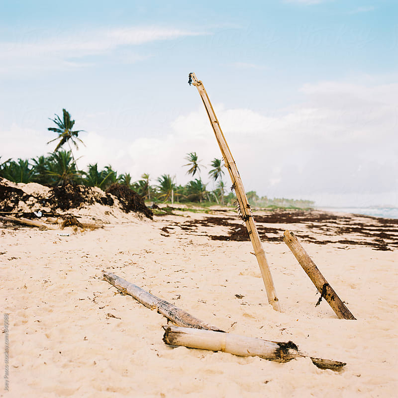 Bamboo posts on a white sand Caribbean beach by Joey Pasco for Stocksy United