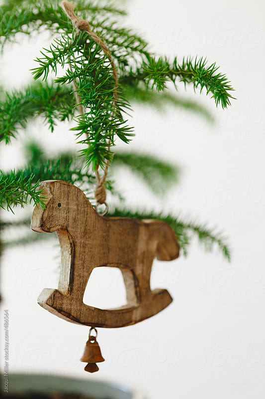 Close up of Christmas ornament hanging on branch of small Norfolk Island Pine tree by Jacqui Miller for Stocksy United