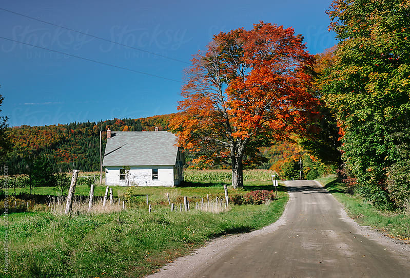 Rural Vermont Landscape by Raymond Forbes LLC for Stocksy United