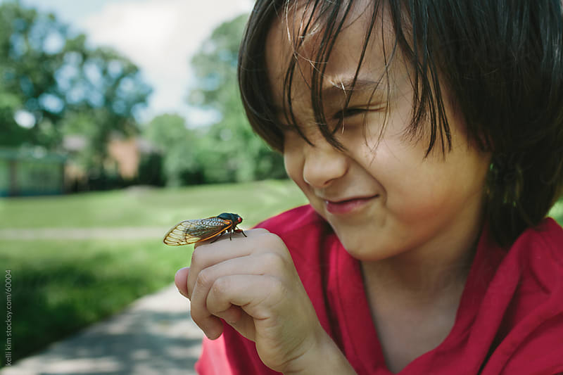 Closeup Of Young Boy Making Silly Face At Cicada Bug On Hand by Kelli Seeger Kim for Stocksy United