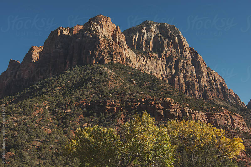 Crawford Arch in Zion by Nicholas Roberts for Stocksy United