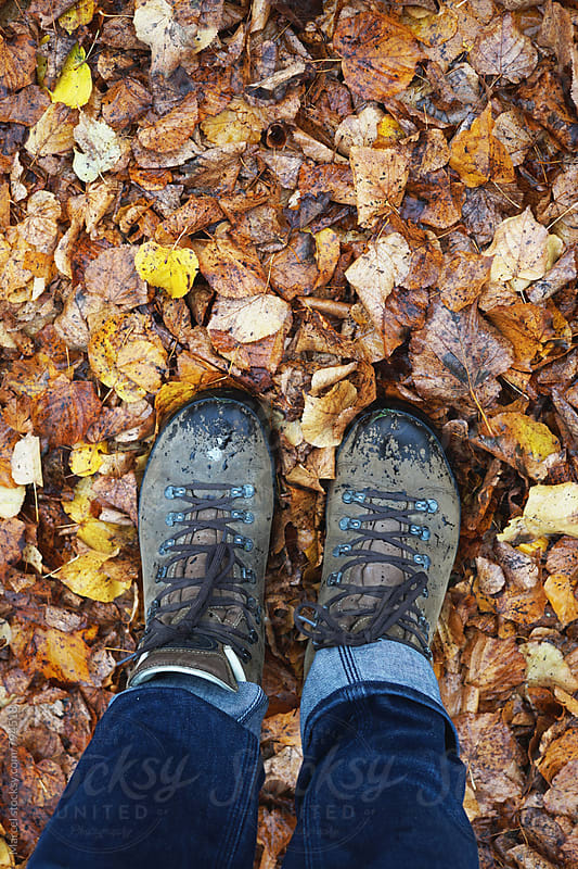 Looking down on hiking shoes in a forest in fall by Marcel for Stocksy United