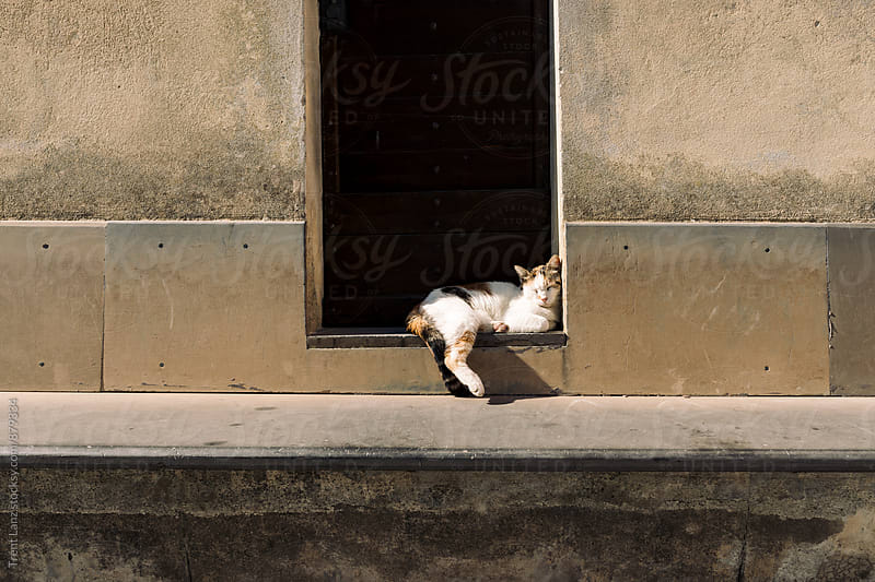 Cat sleeping near the door in Italian village.  by Trent Lanz for Stocksy United