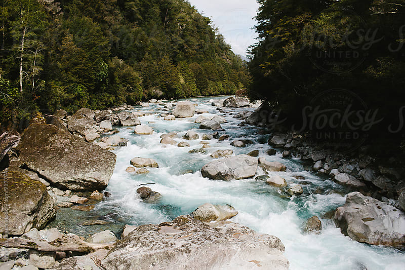 River in Fiordlands National Park, New Zealand. by Cameron Zegers for Stocksy United
