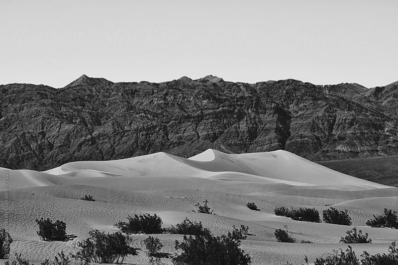 Sand Dunes by Brian Koprowski for Stocksy United