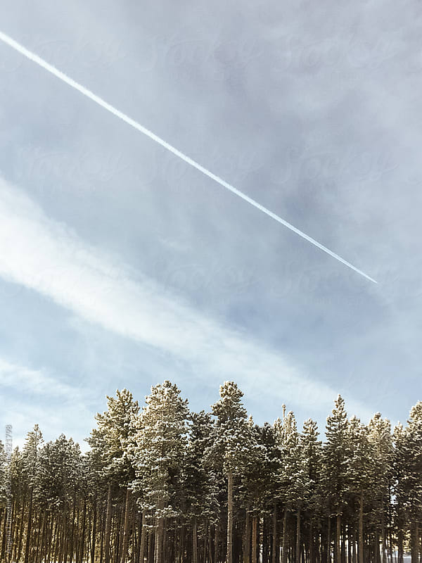 A jet trail above snow covered trees in winter by Angela Lumsden for Stocksy United