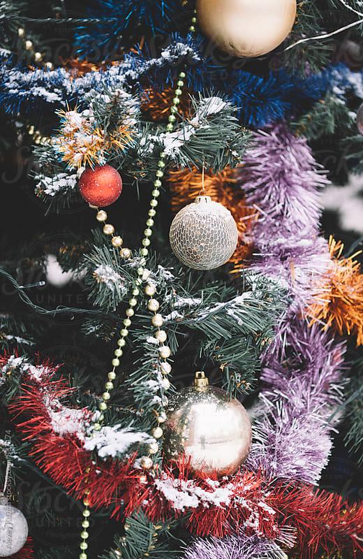 holiday tree outdoors . by Vesna for Stocksy United