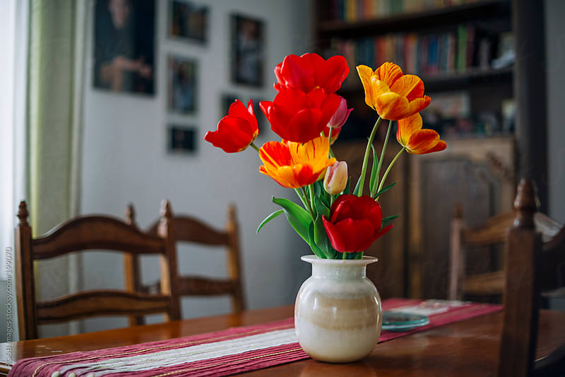 Tulips in vase  by RG&B Images for Stocksy United