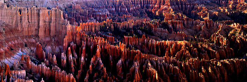 Bryce Canyon National Park by Jason Denning for Stocksy United