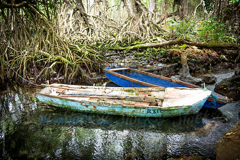 Old grungy fishing boats in forest by Trent Lanz for Stocksy United