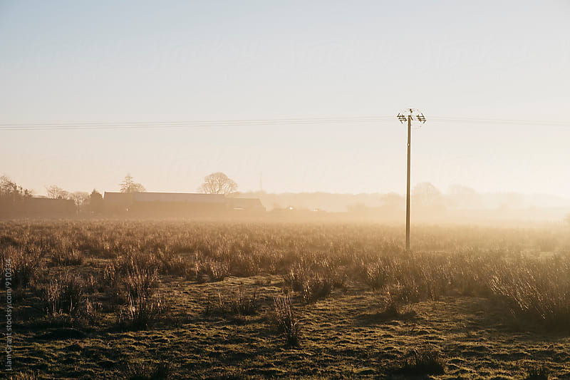 Telegraph pole and barn in fog at sunrise. Derbyshire, UK. by Liam Grant for Stocksy United