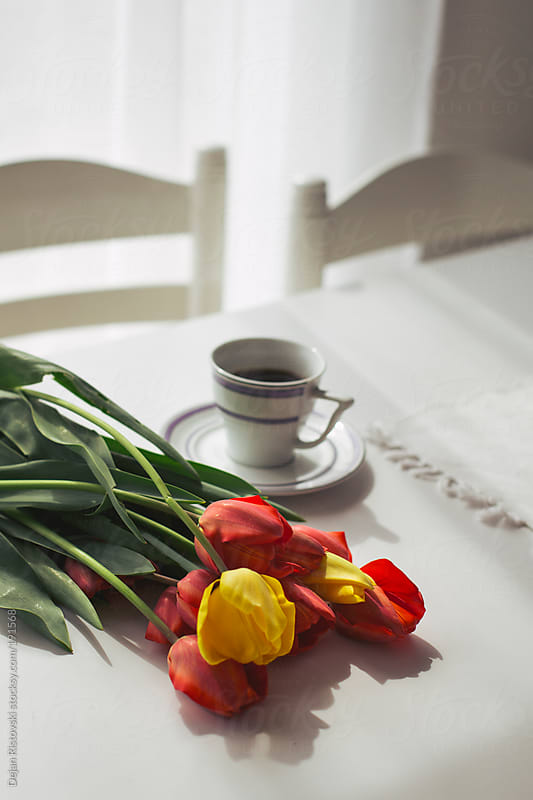 Sunny morning with bunch of tulips by Dejan Ristovski for Stocksy United