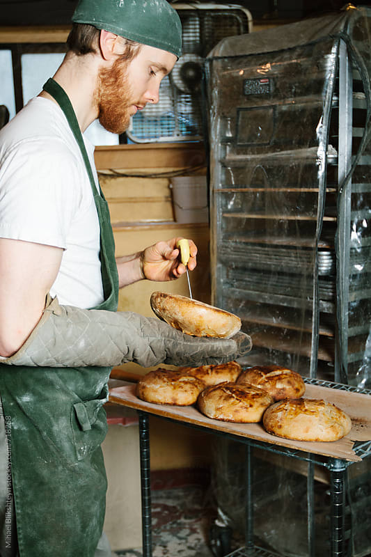 Baker measuring internal temperature of freshly baked bread at a commercial artisinal bakery by Mihael Blikshteyn for Stocksy United