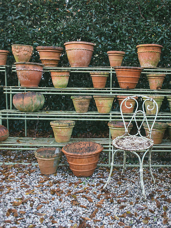 Flowerpot in a Row by HEX. for Stocksy United