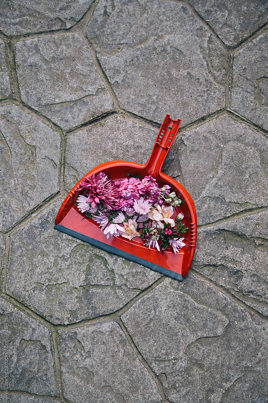 Florals in a dustpan by Ali Lanenga for Stocksy United