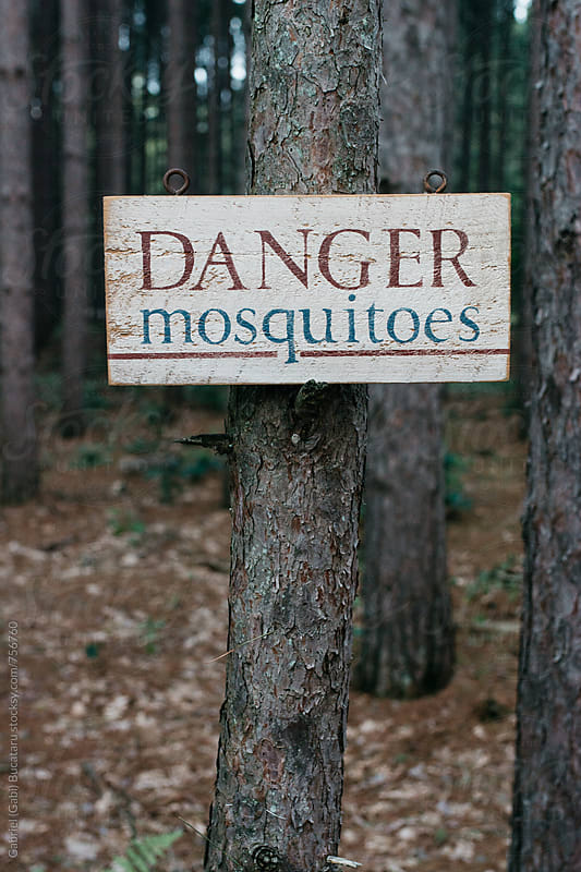 Mosquitoes danger sign on a tree by Gabriel (Gabi) Bucataru for Stocksy United
