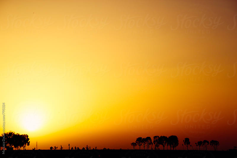 A beautiful Sunset in Yemen by Murtaza Daud for Stocksy United