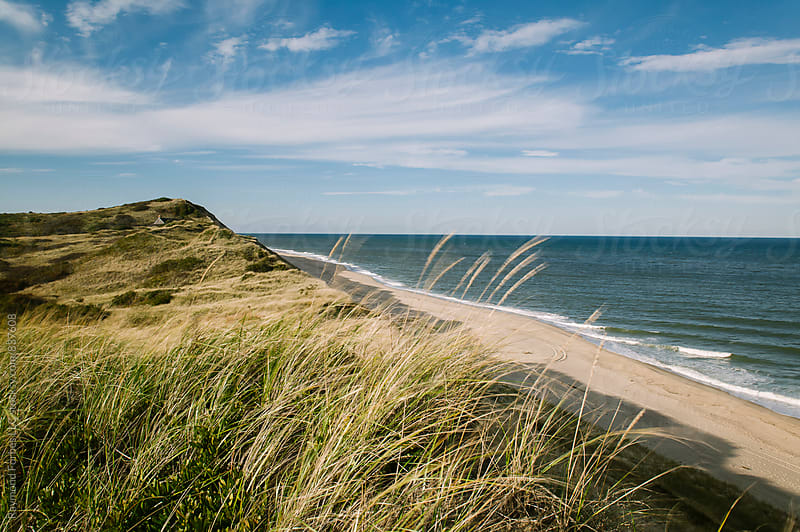 Autumn at Cape Cod National Seashore by Raymond Forbes LLC for Stocksy United