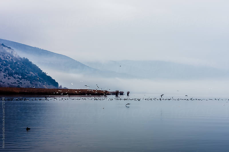 Fog over Pamvotis Lake at Ioannina, Greece by Helen Sotiriadis for Stocksy United
