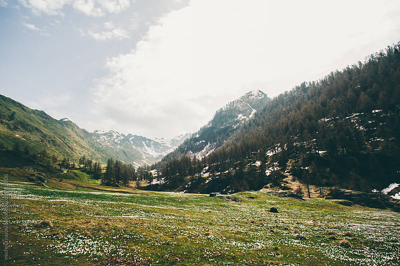 Valley in the mountains by michela ravasio for Stocksy United