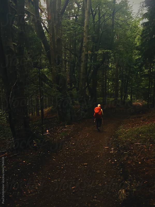 through dark forest by Paul Schlemmer for Stocksy United