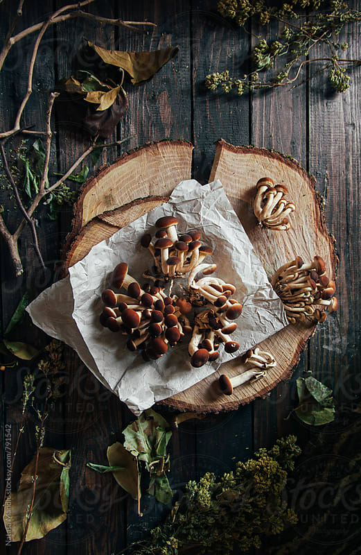 Mushrooms on a wooden table  by Nataša Mandić for Stocksy United