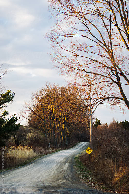 country road with a dead end sign by Deirdre Malfatto for Stocksy United