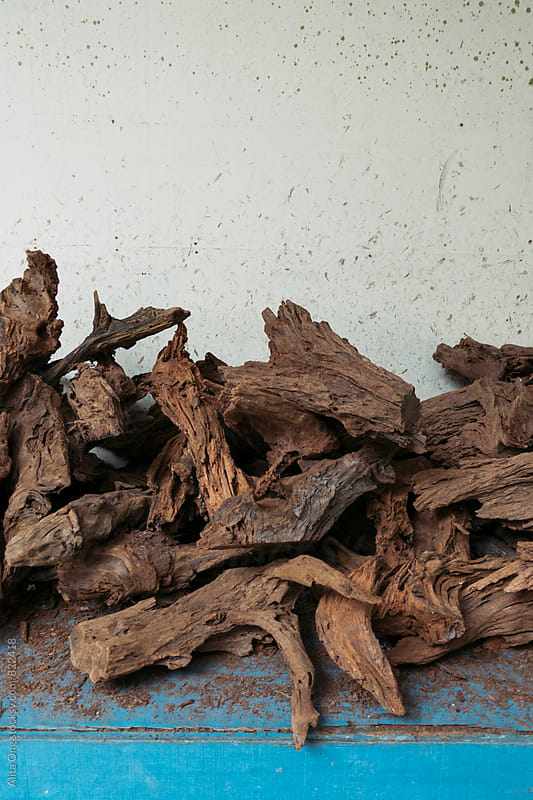 Pile of drift wood by Alita Ong for Stocksy United
