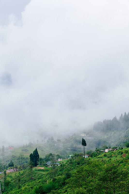 A hilly landscape in the fog by Saptak Ganguly for Stocksy United