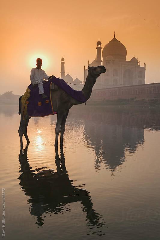 India, Uttar Pradesh, The Taj Mahal by Gavin Hellier for Stocksy United