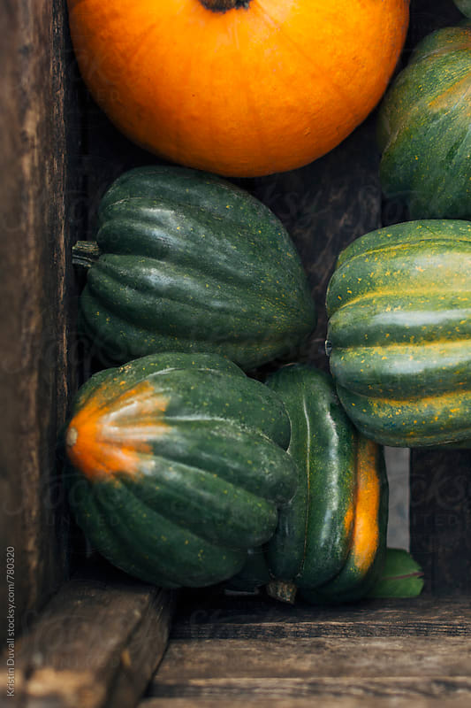 Crate filled with acorn squash by Kristin Duvall for Stocksy United