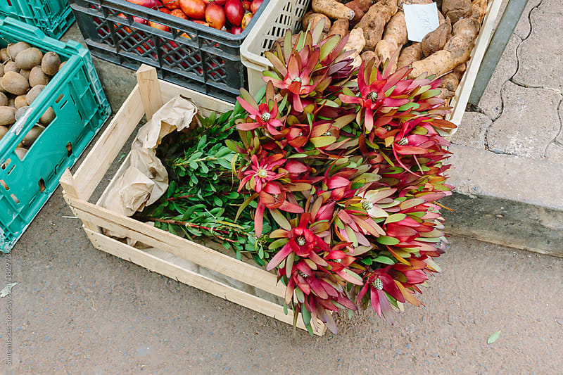 Flowers at a farmers\' market in Madeira