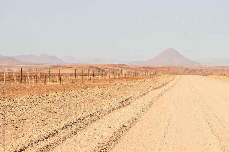 Dirt road on desert rural landscape, Namibia by Alejandro Moreno de Carlos for Stocksy United