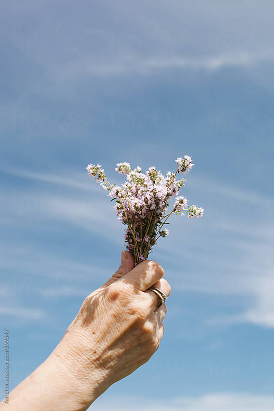 Holding Flowers Over the Sky by Ani Dimi for Stocksy United