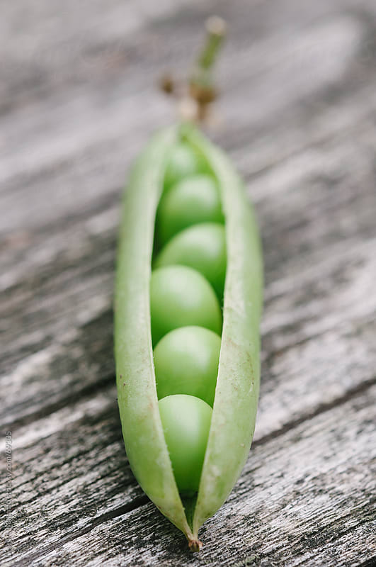 close-up of open pea pod on a wood table by Deirdre Malfatto for Stocksy United
