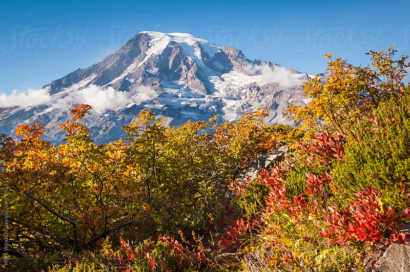 Mountain and Autumn vegetation by Mark Windom for Stocksy United