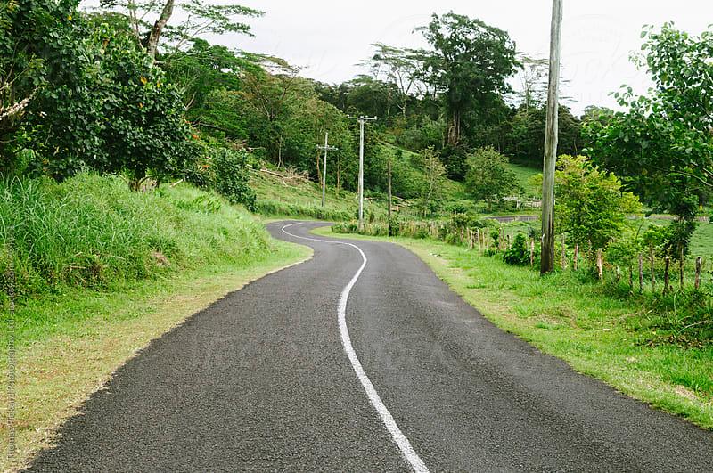 Winding road, Upola Island, Samoa. by Thomas Pickard for Stocksy United