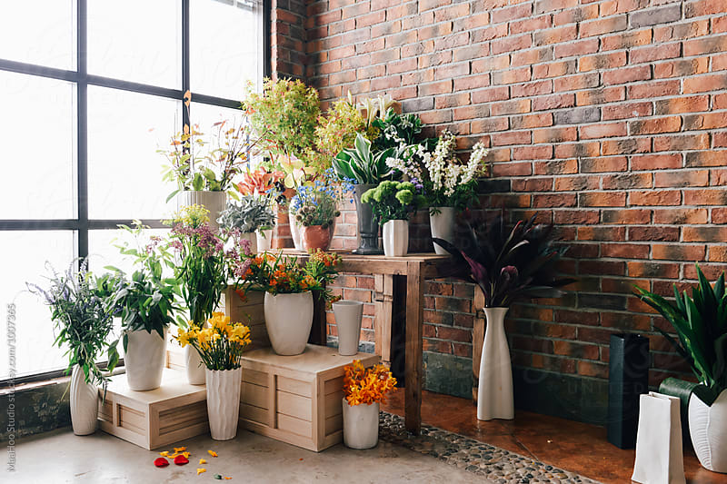 Fresh flowers in store by MaaHoo Studio for Stocksy United