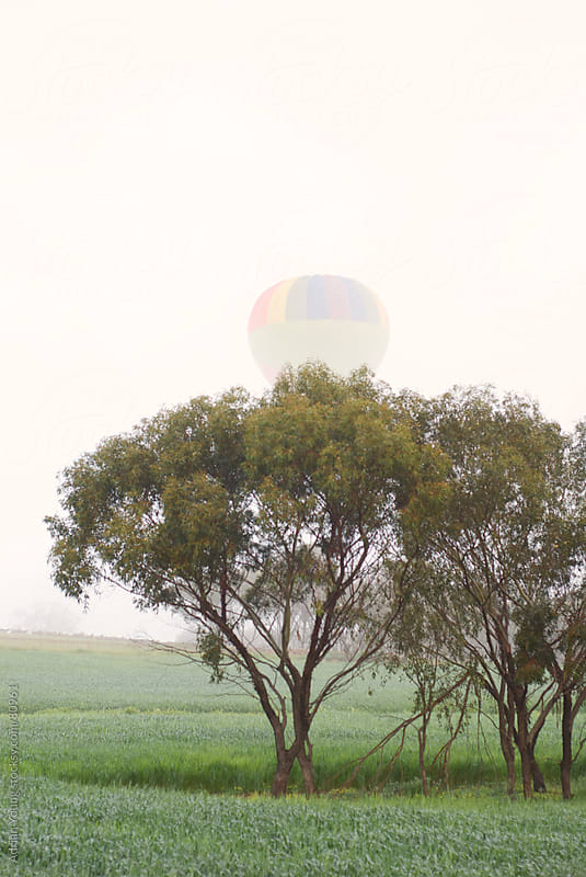 Hot Air Balloon Rising Over Trees by Adrian P Young for Stocksy United