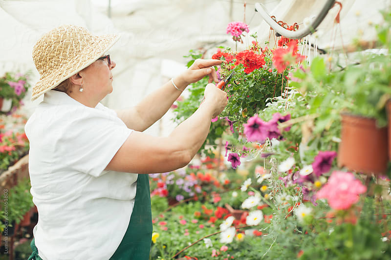 Woman Working in a Nursery Garden by Lumina for Stocksy United