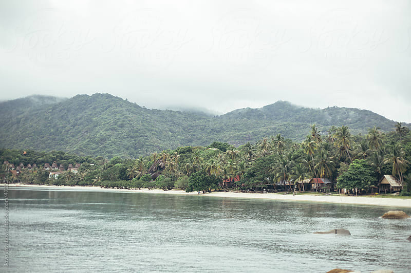 View of beach coastline with jungle and mountains covered in mist behind  by Jovo Jovanovic for Stocksy United