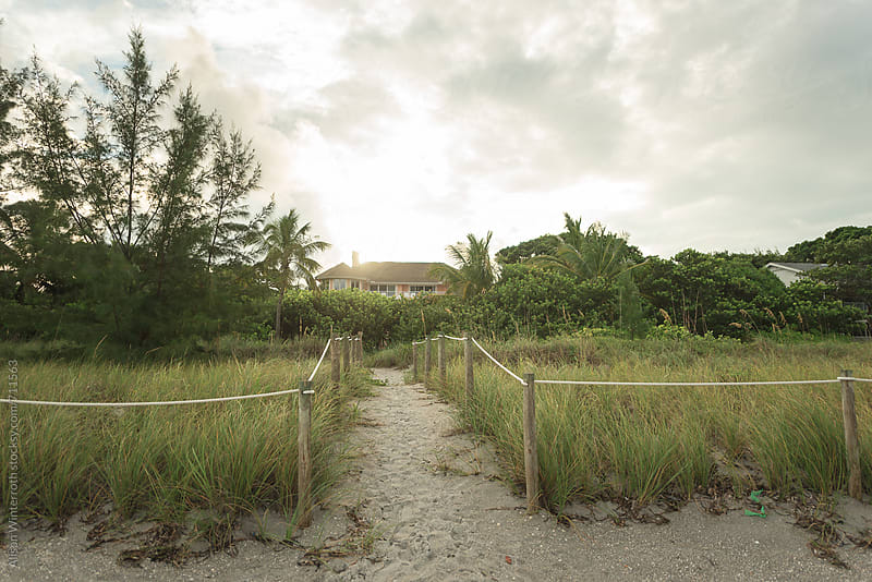 A Path Leading To A Beachfront Home by Alison Winterroth for Stocksy United