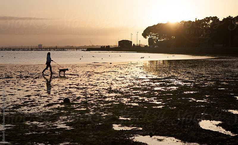 Woman walking with dog at sunset by Robert Kohlhuber for Stocksy United
