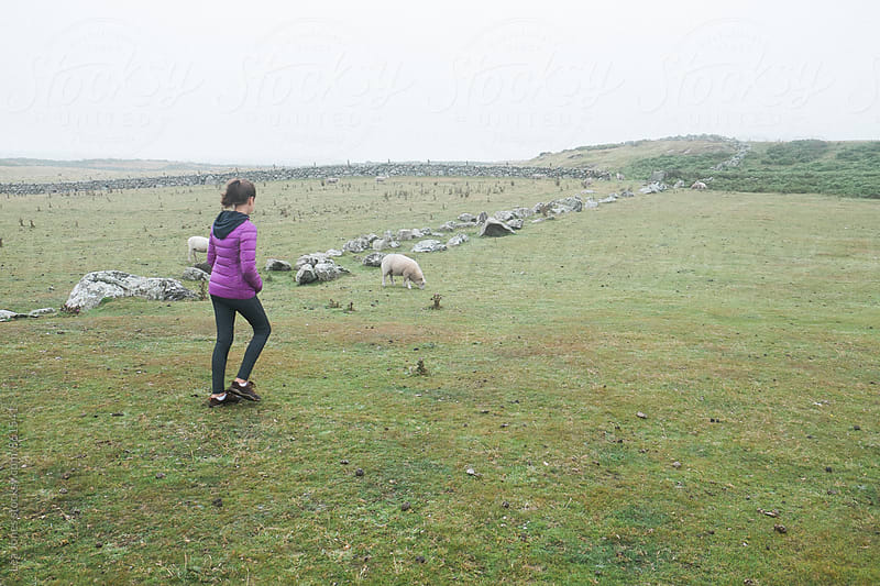 Young woman hiking next to sheep by Léa Jones for Stocksy United