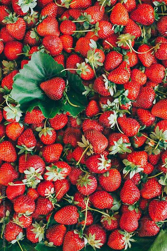 Strawberries  by Borislav Zhuykov for Stocksy United