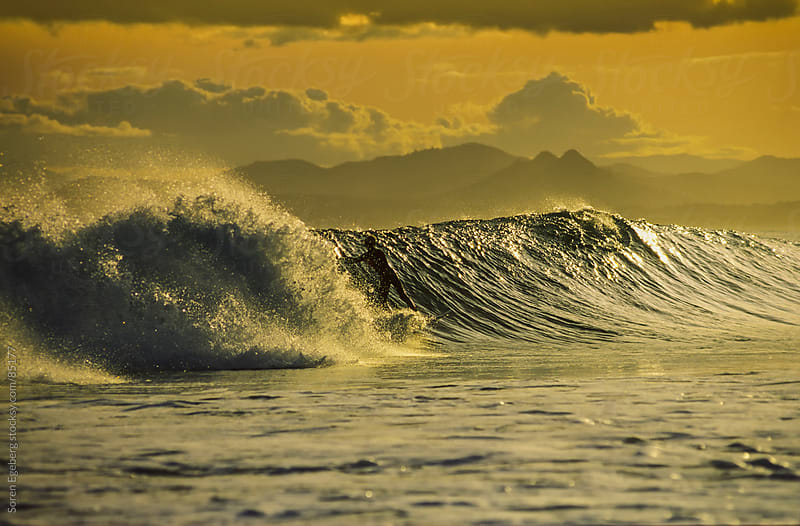 Young man surfing wave at sunset in Byron Bay Australia by Soren Egeberg for Stocksy United