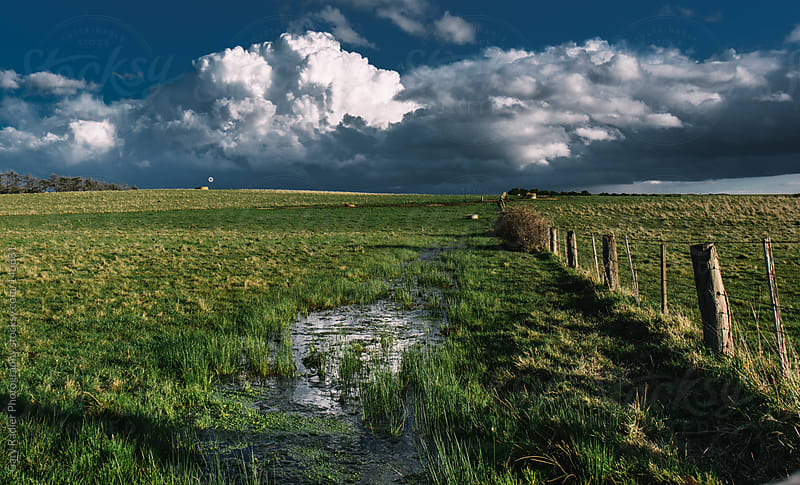 Flooded Paddock by Gary Radler Photography for Stocksy United