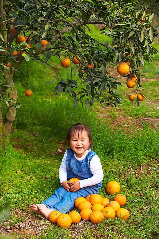 one lovely little girl in the orange farm by Bo Bo for Stocksy United