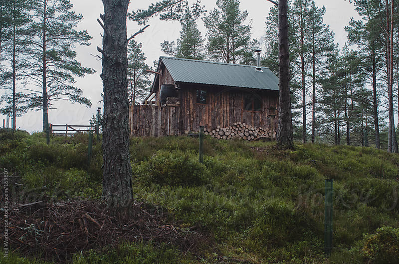 Log Cabin in the Woods by Neil Warburton for Stocksy United