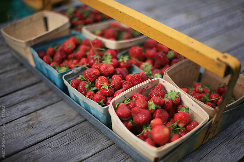 Baskets of Fresh Picked Strawberries #1 by ALICIA BOCK for Stocksy United